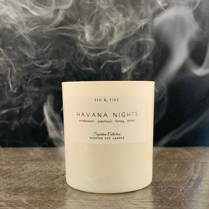 Handcrafted candle - scent Havana Nights - smells of sandalwood, patchouli, honey, and amber - all natural soy candle - vegan, non-toxic, made with essential oils - container is a white tumbler
