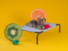 Load image into Gallery viewer, COOLAROO ELEVATED PET BED SMALL