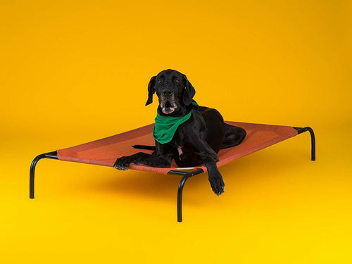 COOLAROO ELEVATED PET BED EXTRA LARGE