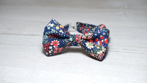 Liberty Elderberry Red Bow Tie