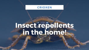 image-insect-repellents-in-the-home