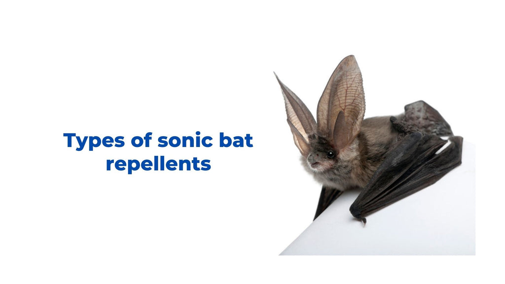 Image-types-of-sonic-bat-repellents