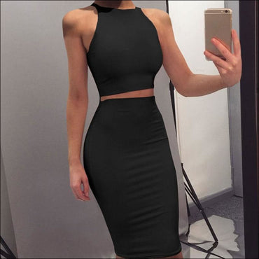 Sleeveless Crop Top and Bodycon Skirt Fashion Two Pieces