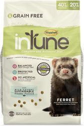 higgins intune ferret food review