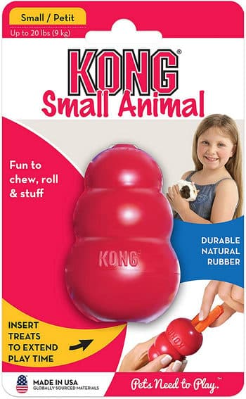 Kong Small Animal Toy Review