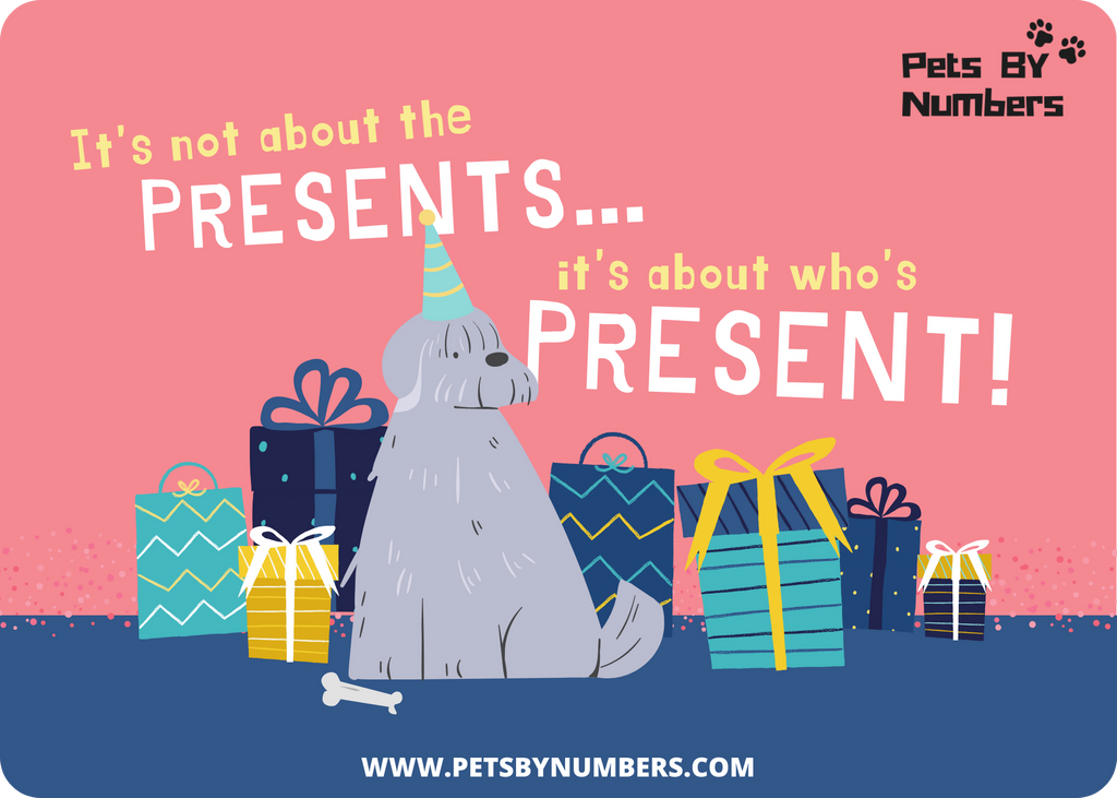PetsByNumbers eGift Card - Pets By Numbers