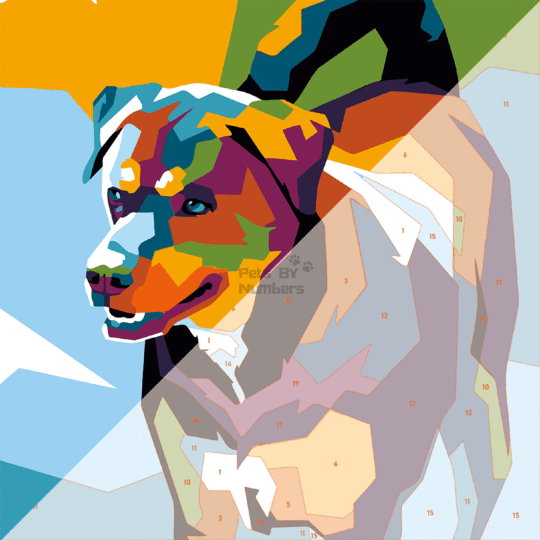 Pop Art By Numbers - Pets By Numbers