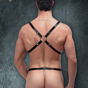 Male Power PAK891 Harness Rip Of Harness Set