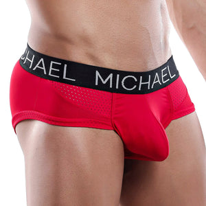 Michael MLH017 Brief