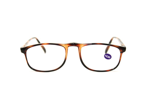 Pacific Eyewear - PC901 Readers Tortoise