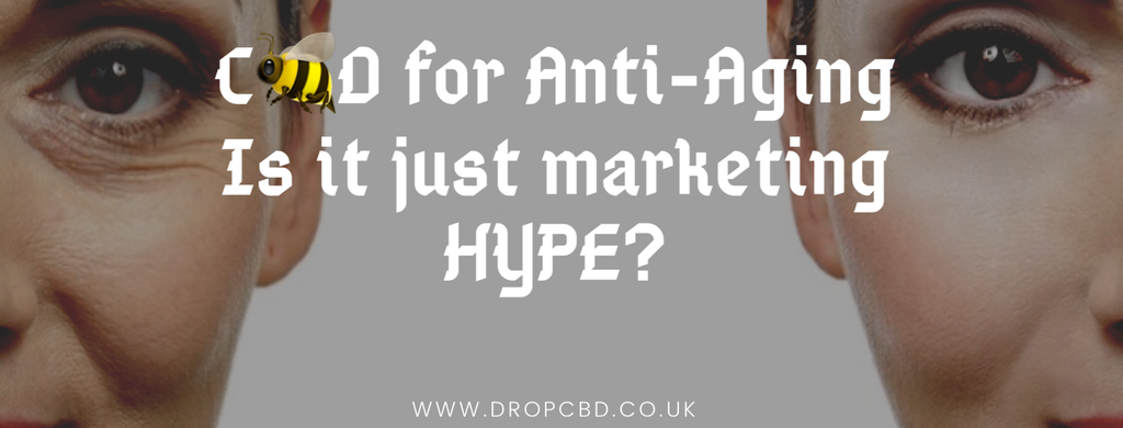 C🐝D for Anti-Aging: Is it Just Marketing Hype?