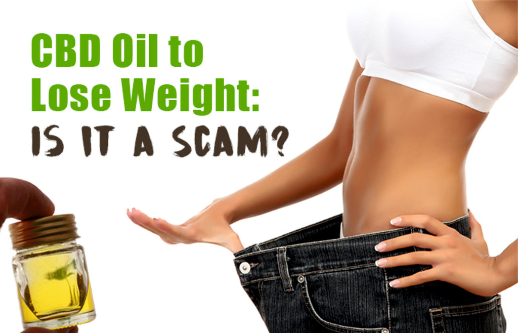 Can You Really Lose Weight with CBD Oil?
