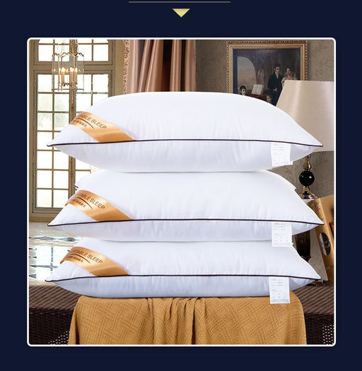 Star Hotel High Quality Down Silk Pillow