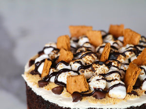 s'mores naked cake