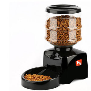 Automatic Pet Feeder fountain Voice Message Recording LCD Screen Dogs Cats Food Dispenser Bowl