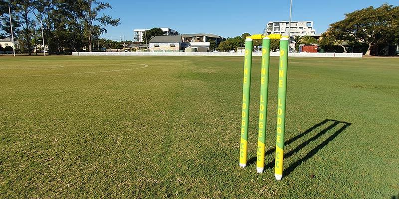 Custom cricket stumps - will they last?