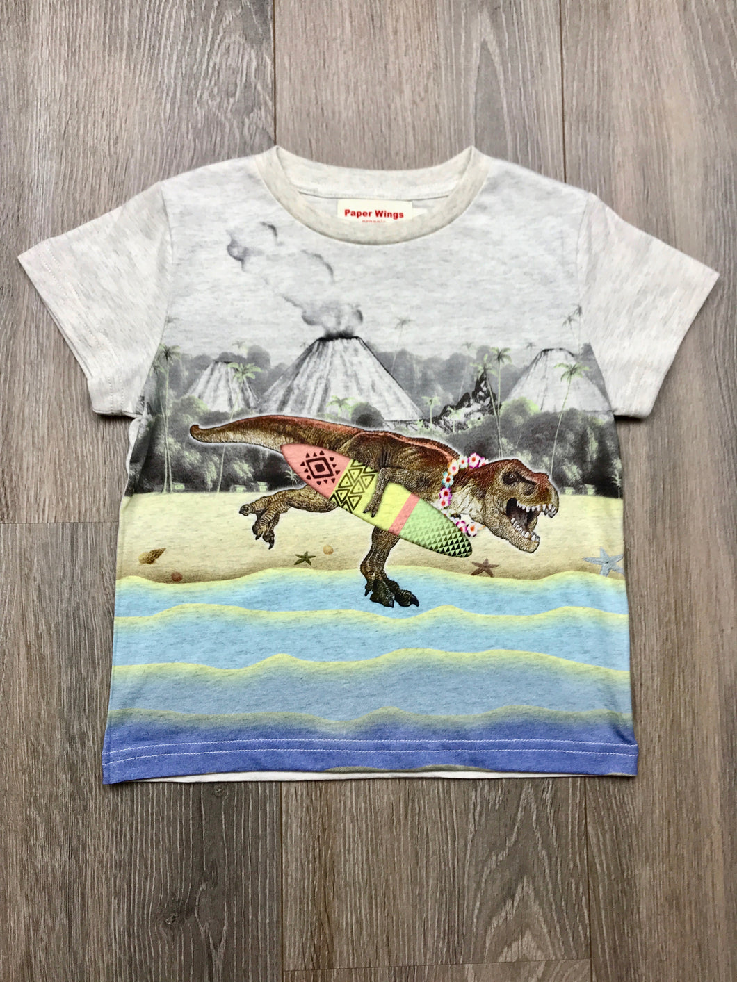 Paper Wings Boys Dinosaur Surfer T-shirt