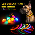 Led Dog Collar Tag Puppy Leash Collars For Small Large Dog Cat Light Solid Dog-Collar Safety Adjustable Nylon Pet Collar Product - ShopyMart