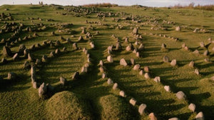 Viking burials and evidence of Viking occupation