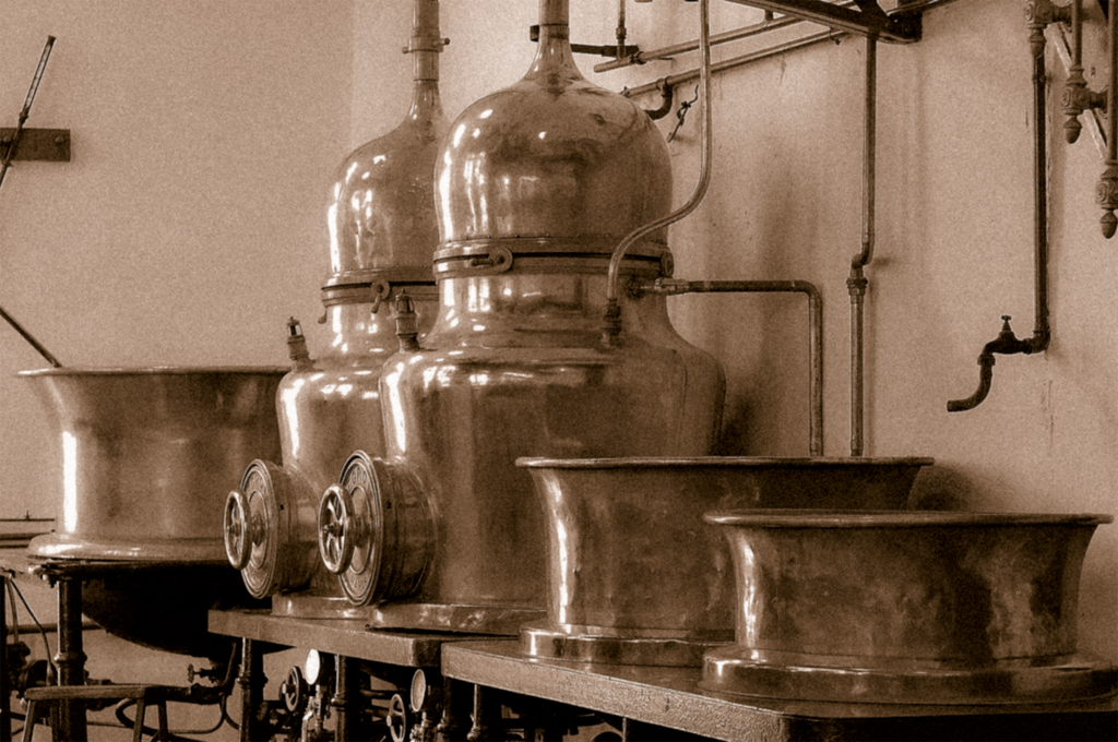The History of Gin - Explained