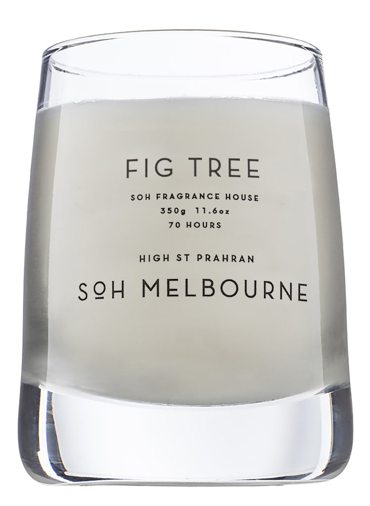 Fig Tree // Glass