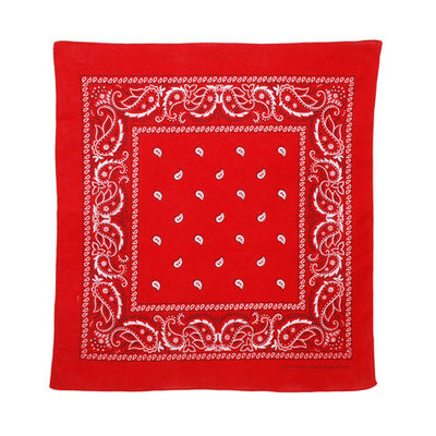 Bandana - Red Paisley