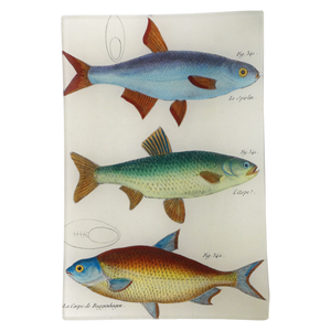 Three Fishes Tray by John Derian