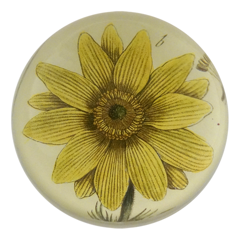 Yellow Flower Paperweight by John Derian