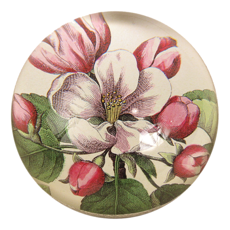 Roses Paperweight by John Derian