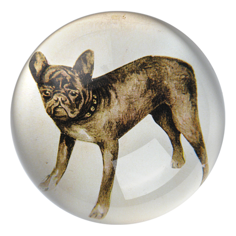 French Bulldog Paperweight by John Derian