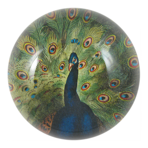 Peacock Paperweight by John Derian