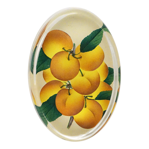 Orchard Fruit Paperweight by John Derian