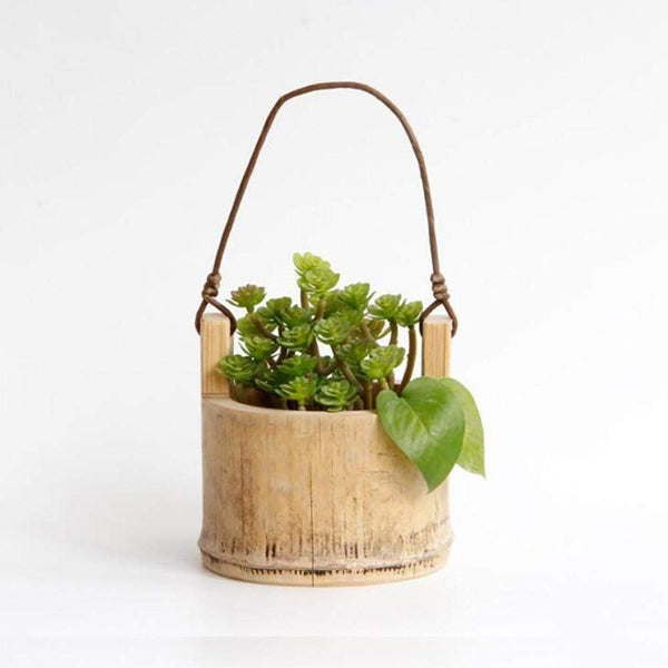 Bathroom Hanging Planter