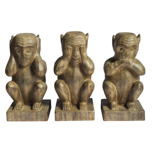 Three Wise Monkeys Set