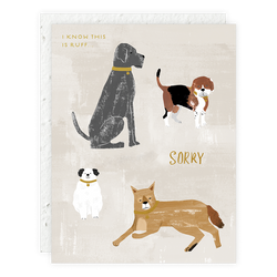 Seedlings // Dogs Card