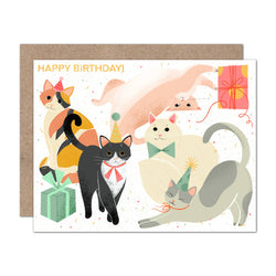 Kitty Bday Card