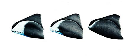 Bowhead Whale (Comparison Of Chin Markings) Original Artwork