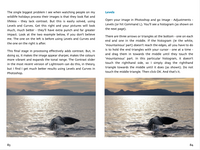 Digital Workflow for Wildlife Photographers