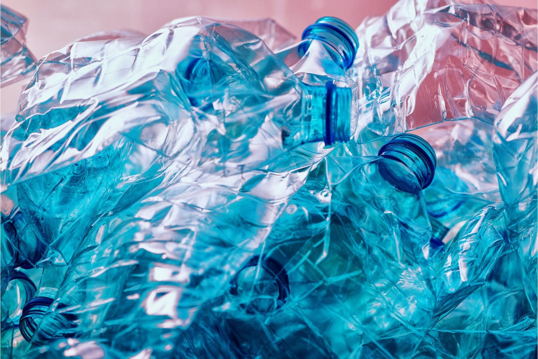 Stop Polluting the Planet with Disposable Plastic Water Bottles