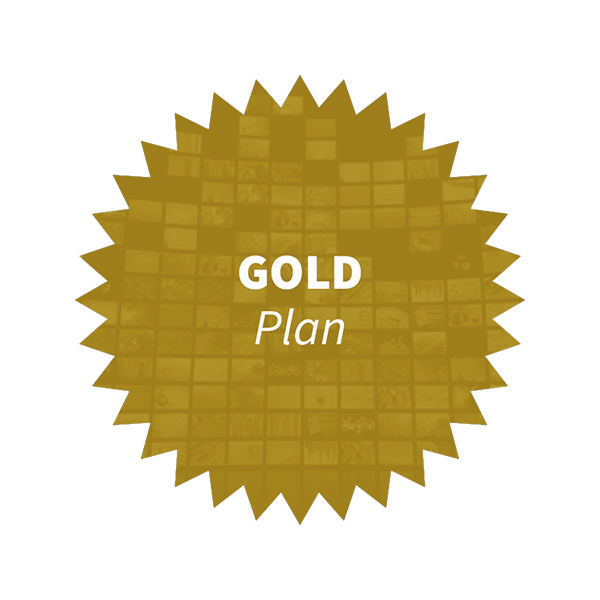 Version Gold 2- Garantie de service (thème wordpress)