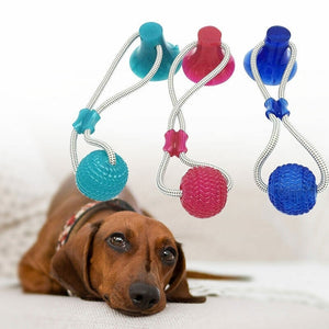 Dog Interactive Suction Cup