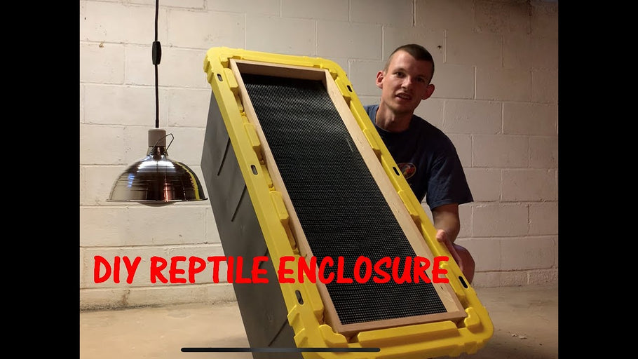 How To: Storage Bin Reptile Enclosure! by Rooted In Reptiles (1 year ago)