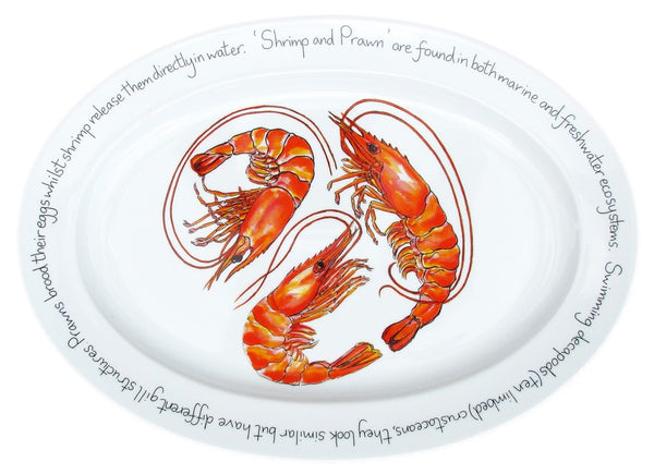 Richard Bramble Oval Plate 39cm - Shrimp