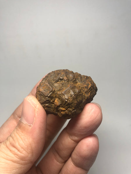 Prophecy Stone Raw Crystals 53g