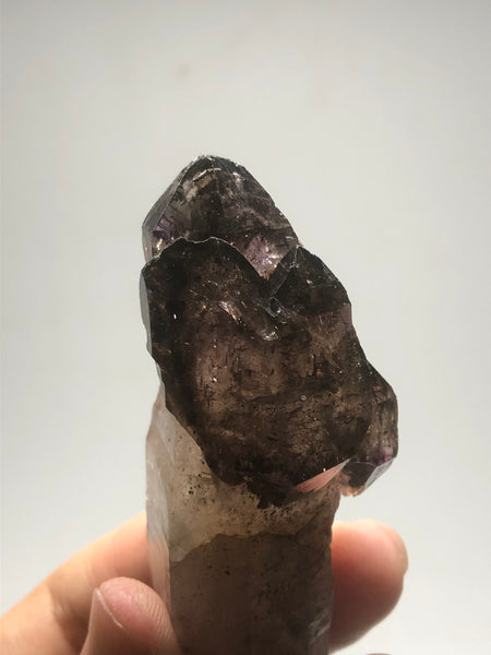 Smoky Amethyst with Red Hematite Scepter Raw Crystals 84g