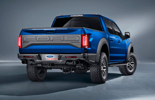 Ford F150 2016- Current Full Tailgate Protector