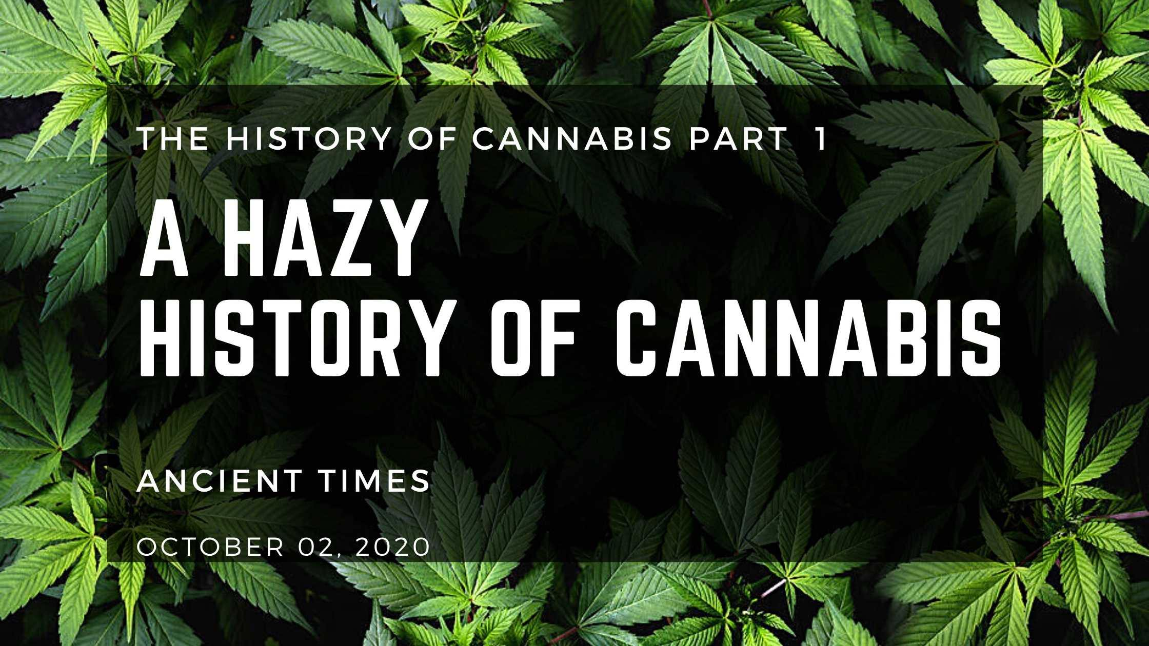 The Hazy History of Cannabis: Ancient Times - Herbaleyes