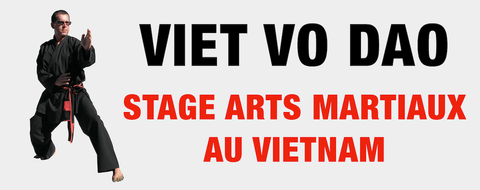 Stage arts martiaux 2020