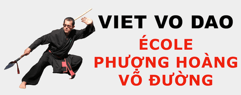 VIET VO DAO THANH LONG