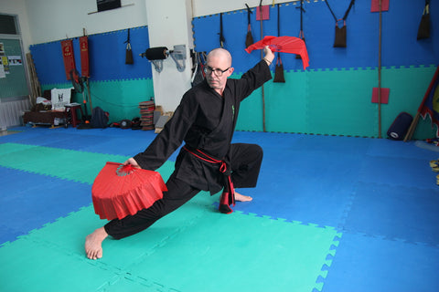 Double eventail taichi pas cher